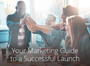 marketing success guide